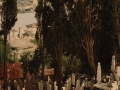 16 the Eyoub cemetery in Constantinople, between 1890 and 1900