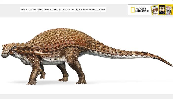 Ένας εκπληκτικός δεινόσαυρος ανακαλύφθηκε από παλαιολόγους σε ορυχείο στον Καναδά