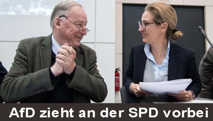 Γερμανία: Δημοσκόπηση του Ινστιτούτου Insa χτυπά καμπανάκι για την μεγάλη άνοδο των Ακροδεξιών