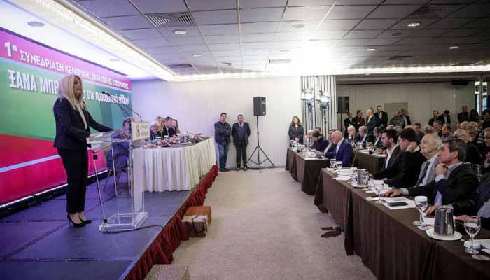 Φώφη Γεννηματά: Ο ΣΥΡΙΖΑ ήρθε ως πρώτη φορά Αριστερά και δημιούργησε τη νέα Δεξιά
