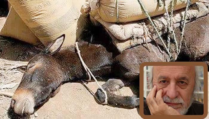Νότης Μαυρουδής*: Τετράποδα και δίποδα γαϊδούρια…