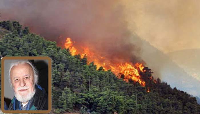 Νότης Μαυρουδής*: Άθλιοι, χθόνιοι καταστροφείς δασών