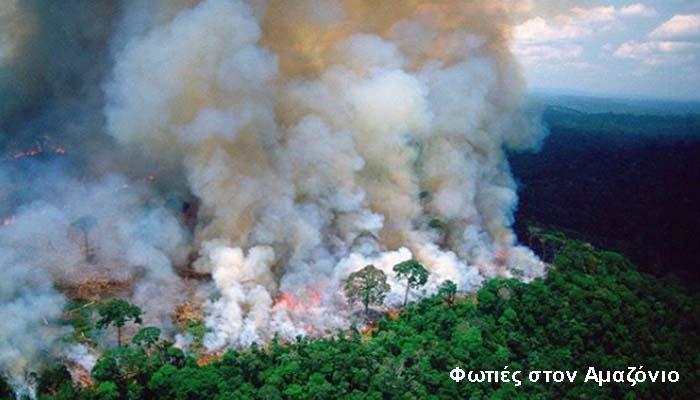 Η υπερβολική κατανάλωση βοδινού και σόγιας από τη Βραζιλία βασική αιτία για τις φωτιές στον Αμαζόνιο