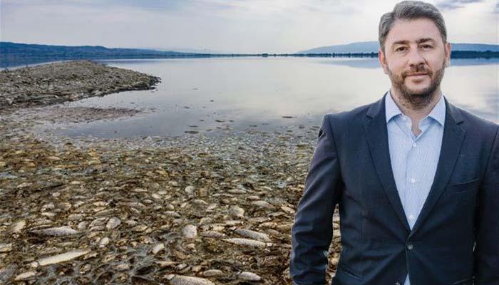 Νίκος Ανδρουλάκης: Κίνδυνο νέας οικολογικής καταστροφής στη λίμνη Κορώνεια βλέπει η Κομισιόν