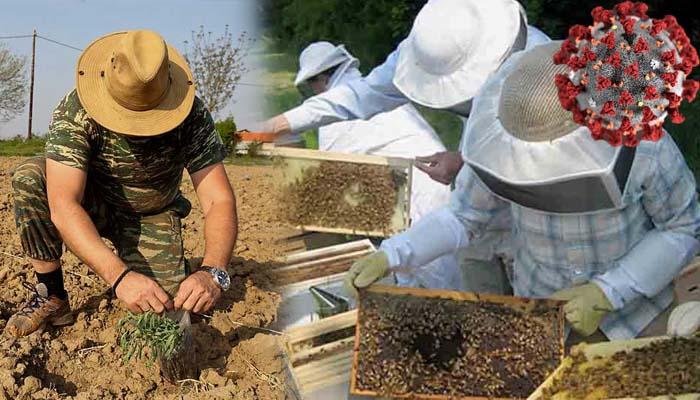 Κορωνοϊός: Οδηγίες για τις μετακινήσεις των αγροτών -Τι ισχύει με τους μελισσοκόμους