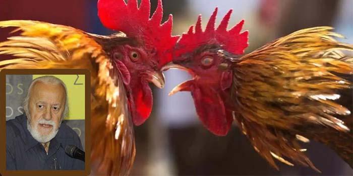 Νότης Μαυρουδής: Κοκορομαχίες