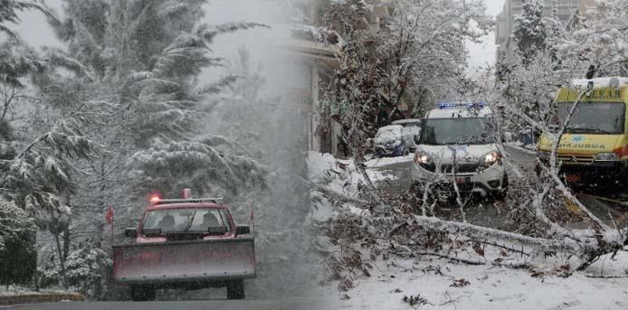 Πρωτόγνωρες συνθήκες – 3 νεκροί & εκατοντάδες χιλιάδες νοικοκυριά στην Αττική χωρίς ρεύμα- Ενεργοποιείται ο στρατός